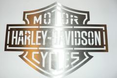 Motor-Harley-Davidson-Cycles